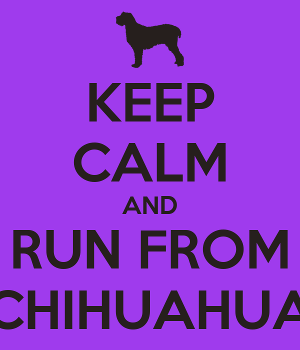KEEP CALM AND RUN FROM CHIHUAHUA