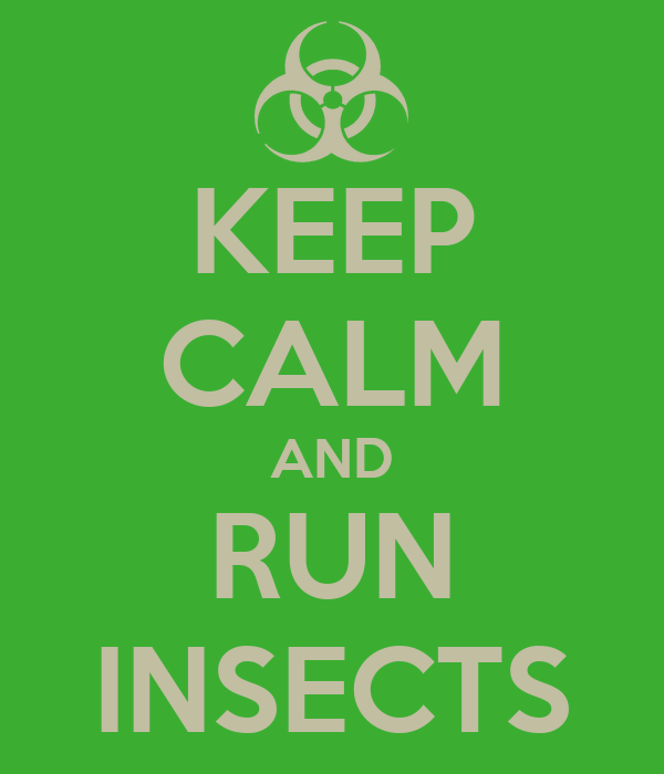 KEEP CALM AND RUN INSECTS