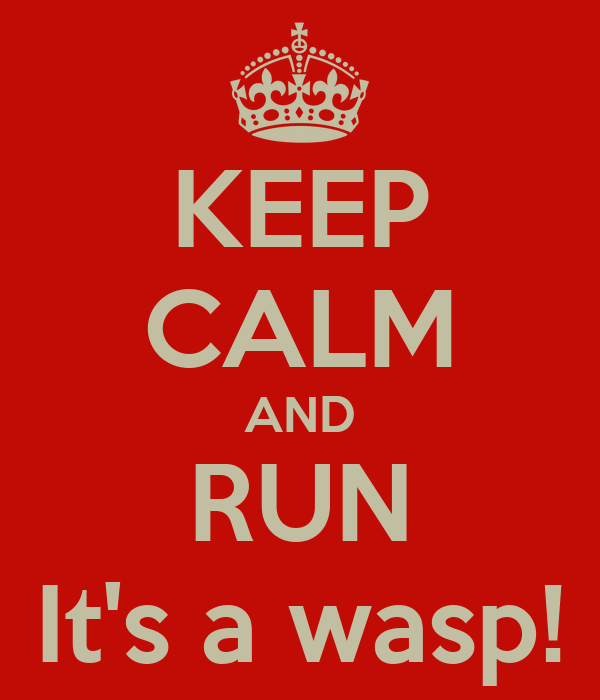 KEEP CALM AND RUN It's a wasp!