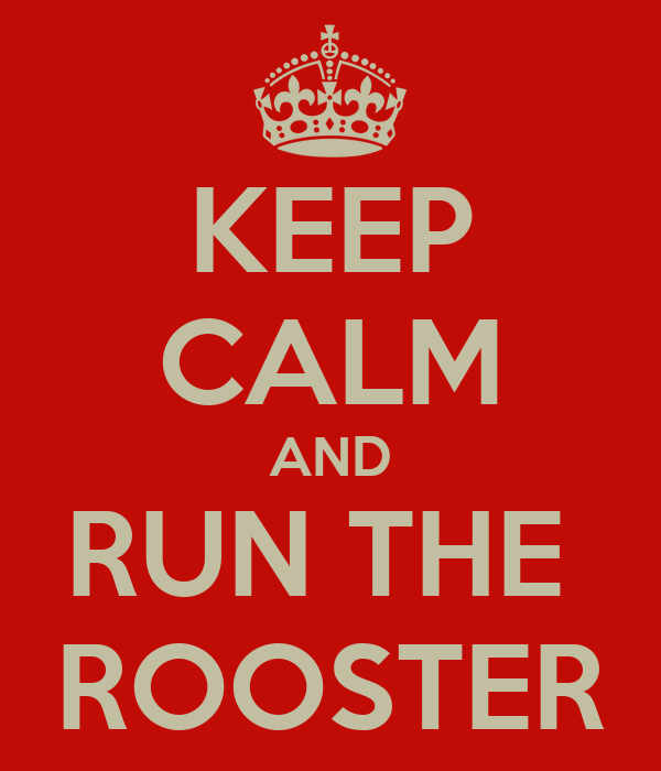 KEEP CALM AND RUN THE  ROOSTER