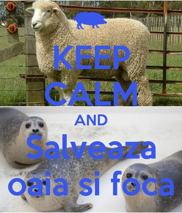 KEEP CALM AND Salveaza oaia si foca