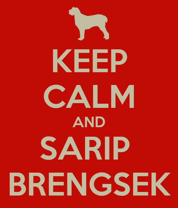 KEEP CALM AND SARIP  BRENGSEK