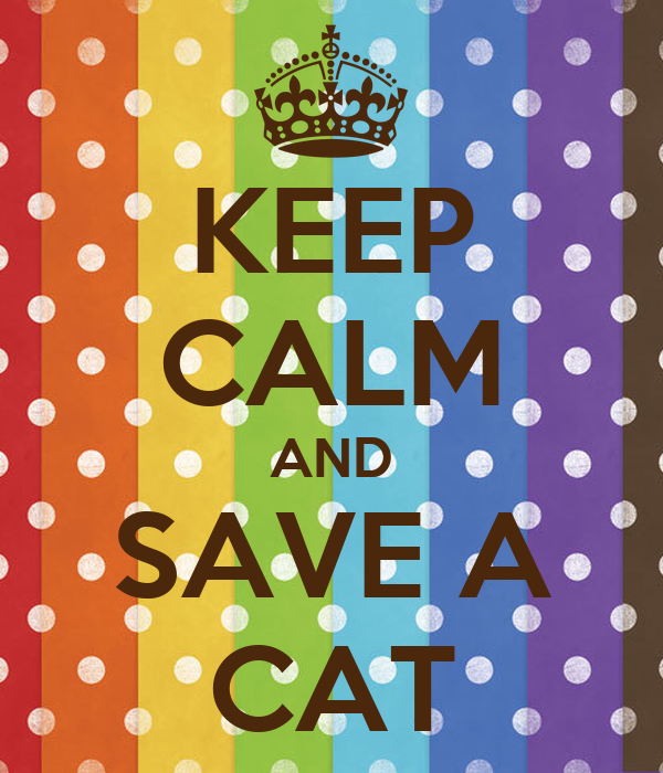 KEEP CALM AND SAVE A CAT