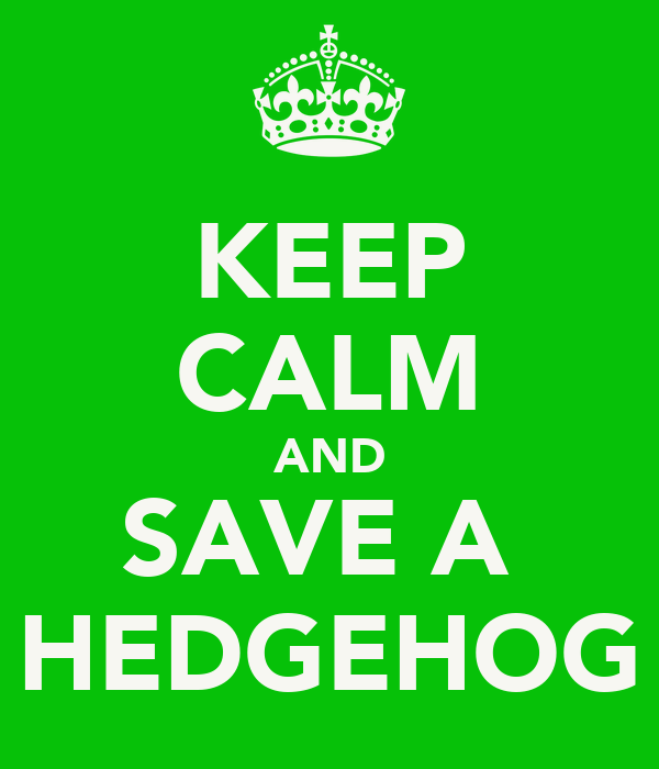 KEEP CALM AND SAVE A  HEDGEHOG