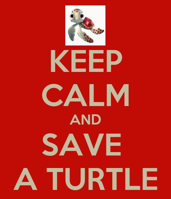 KEEP CALM AND SAVE  A TURTLE