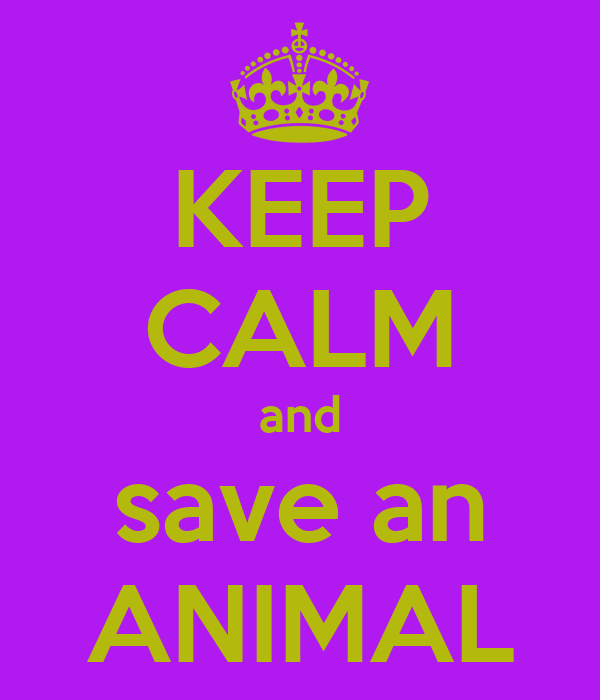 KEEP CALM and save an ANIMAL