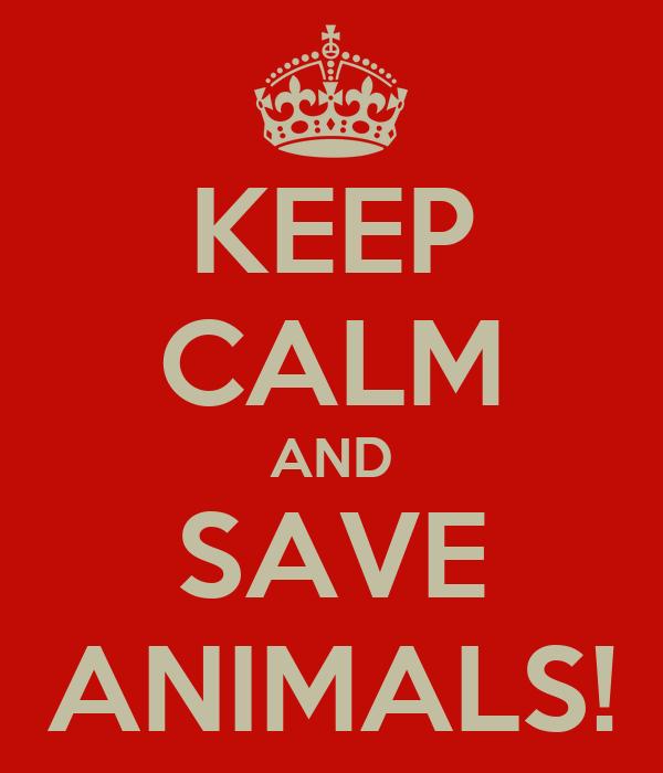 KEEP CALM AND SAVE ANIMALS!