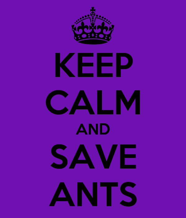 KEEP CALM AND SAVE ANTS