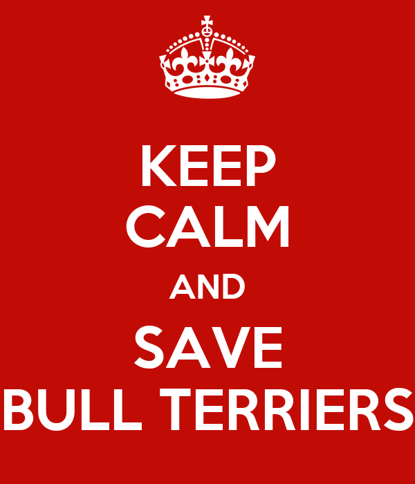 KEEP CALM AND SAVE BULL TERRIERS