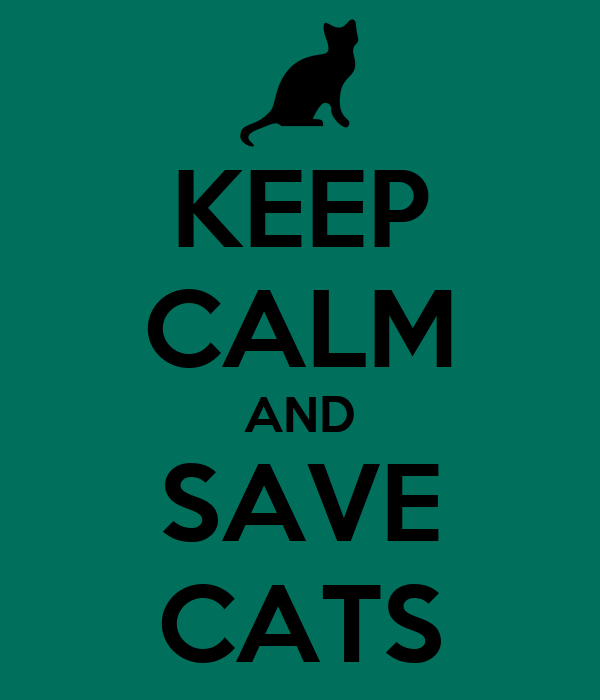 KEEP CALM AND  SAVE  CATS