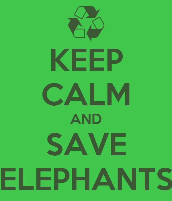 KEEP CALM AND SAVE ELEPHANTS