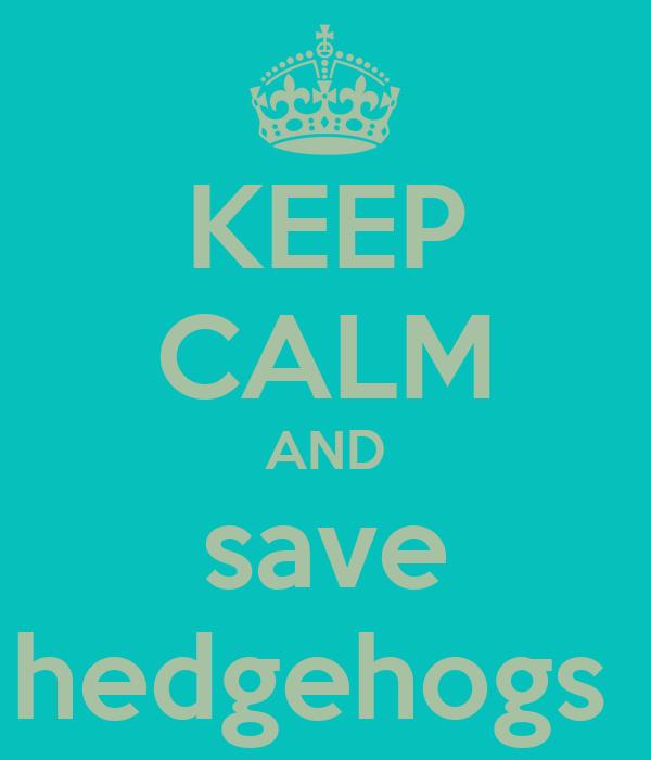 KEEP CALM AND save hedgehogs