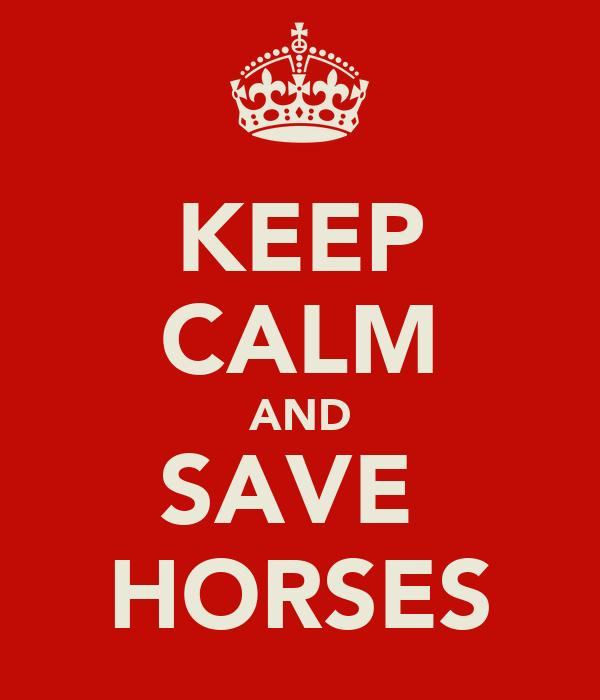 KEEP CALM AND SAVE  HORSES