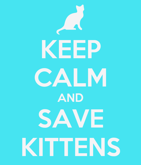 KEEP CALM AND SAVE KITTENS