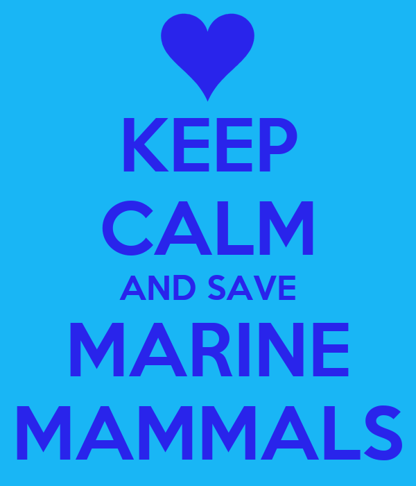 KEEP CALM AND SAVE MARINE MAMMALS