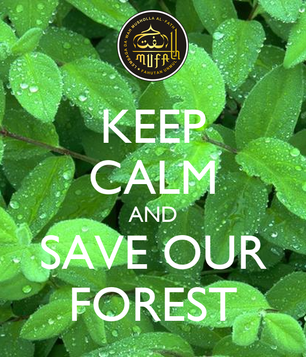 essay on save our forests Save our forests - earth essay example the poster is expressing concern about one of the most important resource.