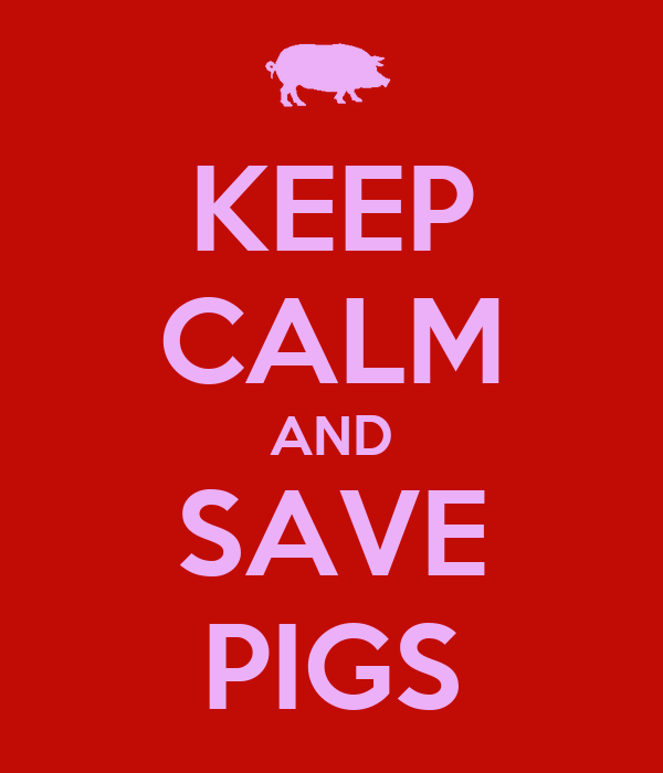 KEEP CALM AND SAVE PIGS
