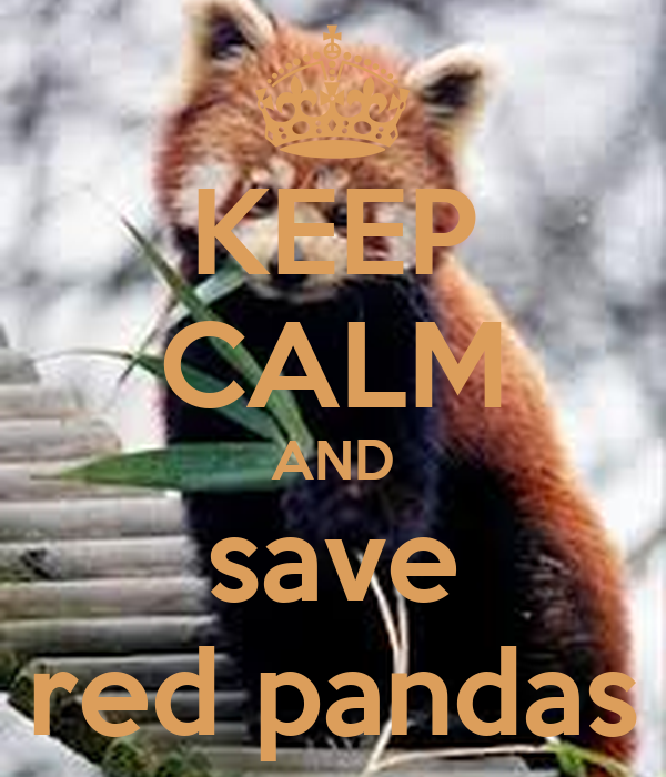 KEEP CALM AND save red pandas