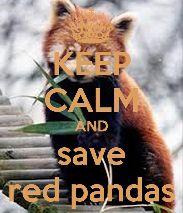 KEEP CALM AND save red pandas