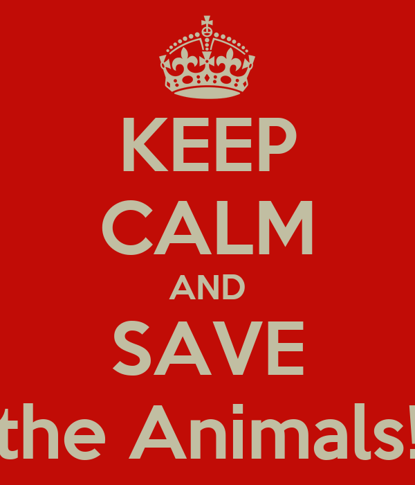 KEEP CALM AND SAVE the Animals!
