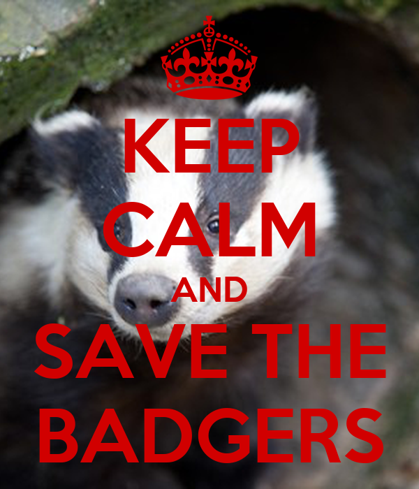 KEEP CALM AND SAVE THE BADGERS