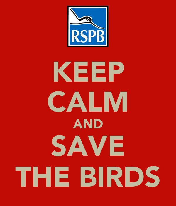 KEEP CALM AND SAVE THE BIRDS