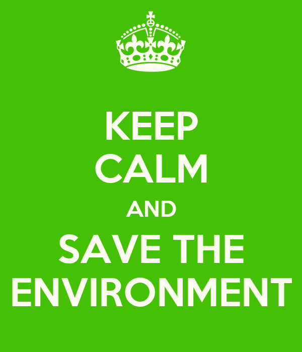 essay about changes in environment