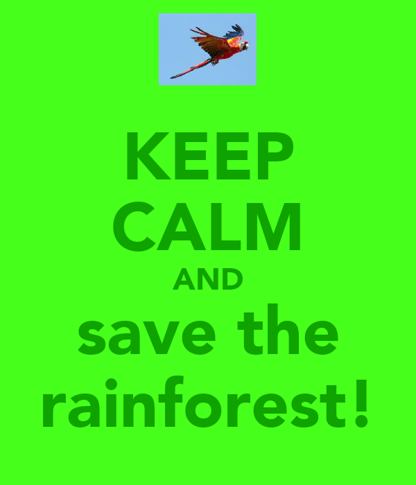 KEEP CALM AND save the rainforest!
