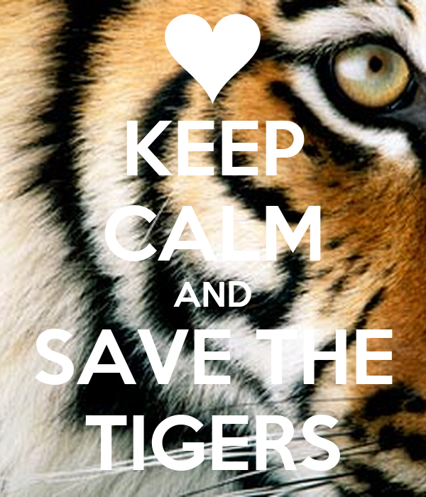 KEEP CALM AND SAVE THE TIGERS
