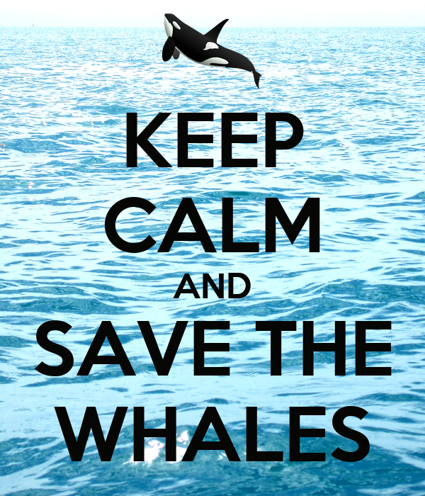 KEEP CALM AND SAVE THE WHALES