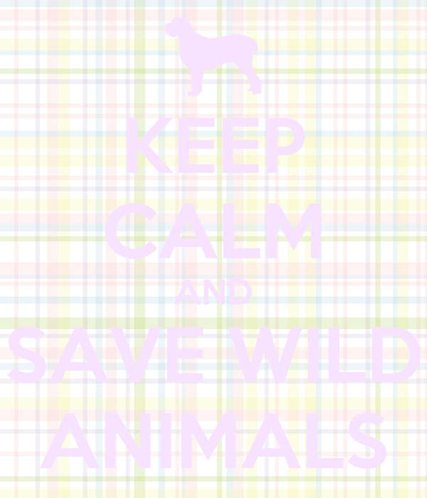KEEP CALM AND SAVE WILD ANIMALS