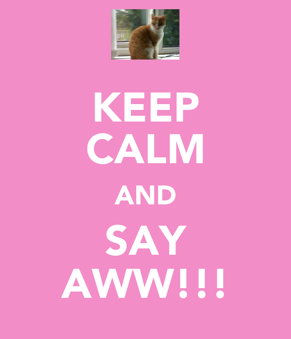 KEEP CALM AND SAY AWW!!!