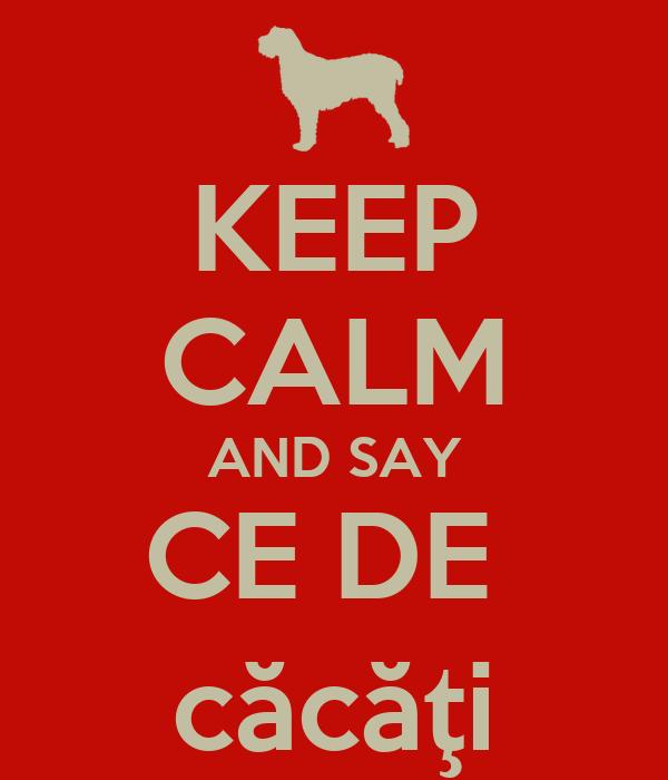 KEEP CALM AND SAY CE DE  căcăţi