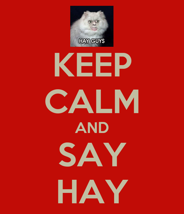 KEEP CALM AND SAY HAY