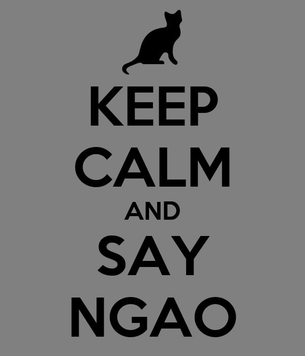 KEEP CALM AND SAY NGAO
