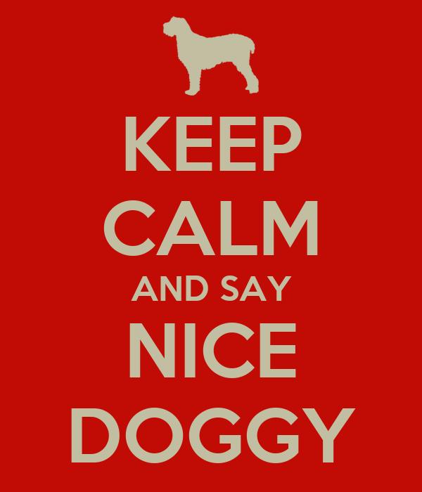 KEEP CALM AND SAY NICE DOGGY