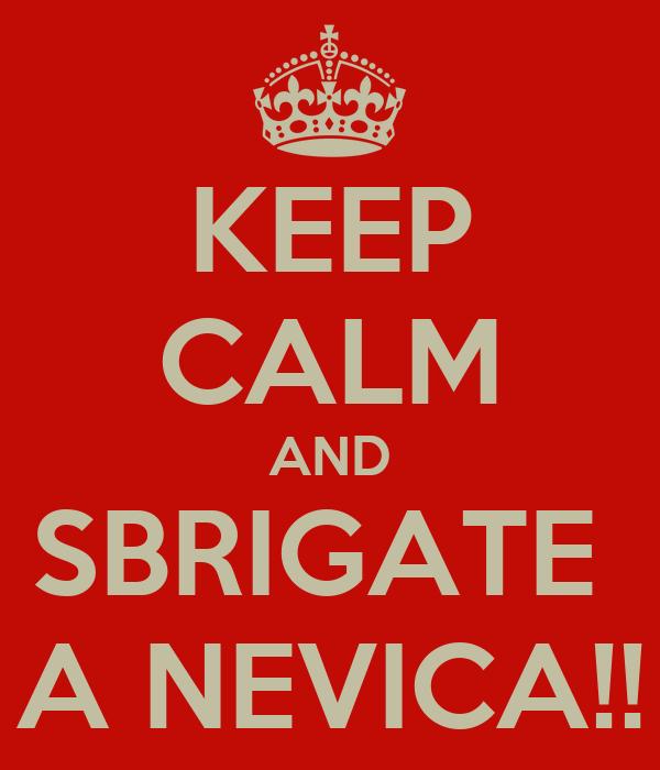 KEEP CALM AND SBRIGATE  A NEVICA!!