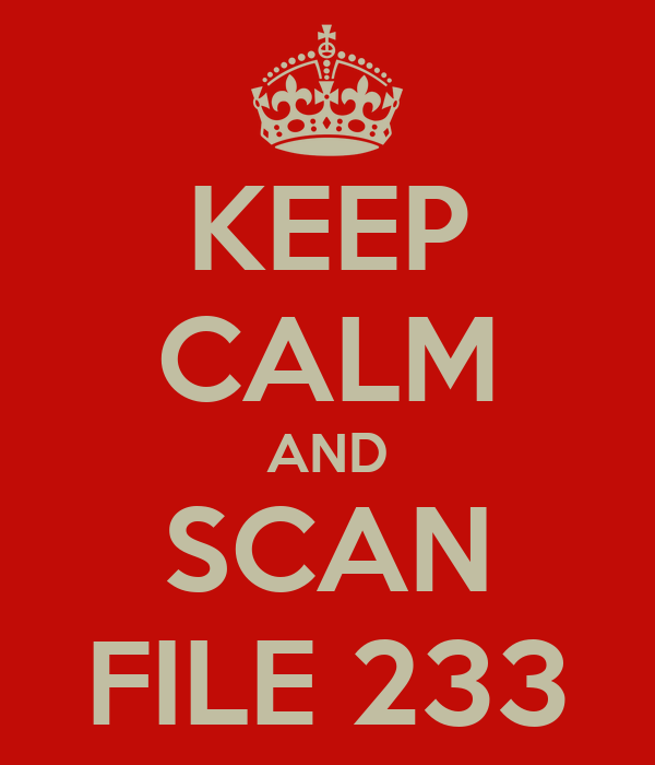 KEEP CALM AND SCAN FILE 233