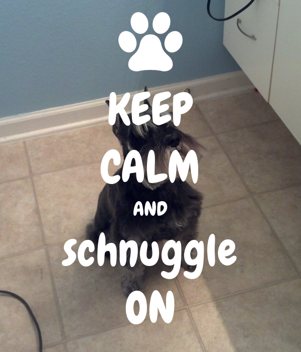 KEEP CALM AND schnuggle ON
