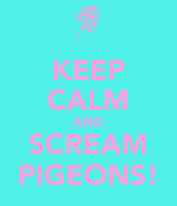 KEEP CALM AND SCREAM PIGEONS!