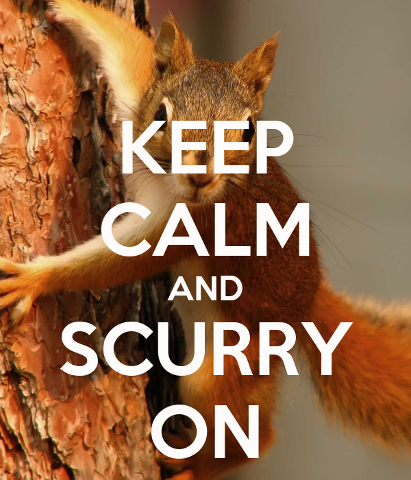 KEEP CALM AND SCURRY ON