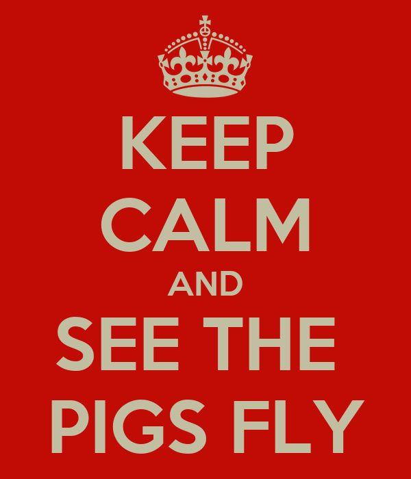 KEEP CALM AND SEE THE  PIGS FLY