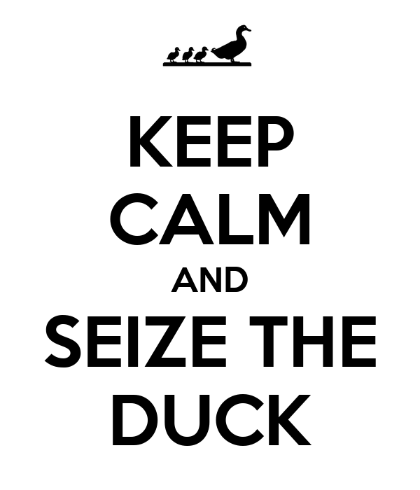 KEEP CALM AND SEIZE THE DUCK