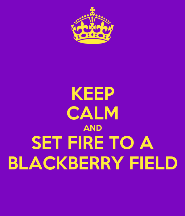 KEEP CALM AND SET FIRE TO A BLACKBERRY FIELD