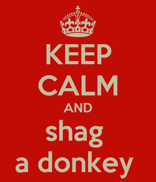 KEEP CALM AND shag  a donkey
