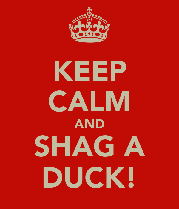 KEEP CALM AND SHAG A DUCK!