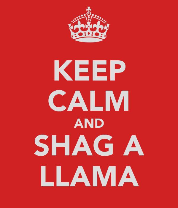 KEEP CALM AND SHAG A LLAMA