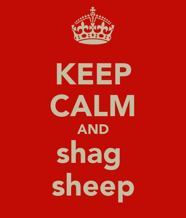 KEEP CALM AND shag  sheep