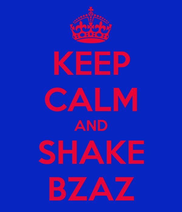KEEP CALM AND SHAKE BZAZ