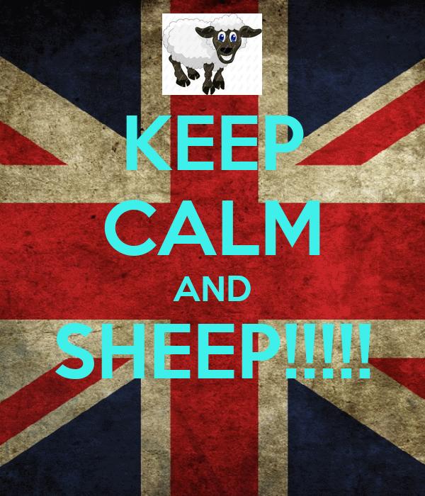 KEEP CALM AND SHEEP!!!!!